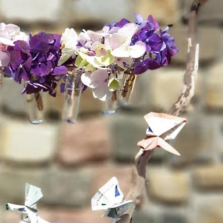 Geldgeschenk Hochzeit Schmetterling