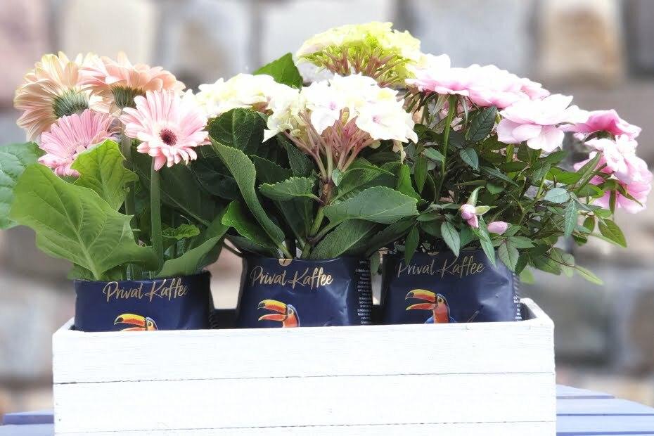 Blumenkasten aus Holz Kaffetueten Upcycling