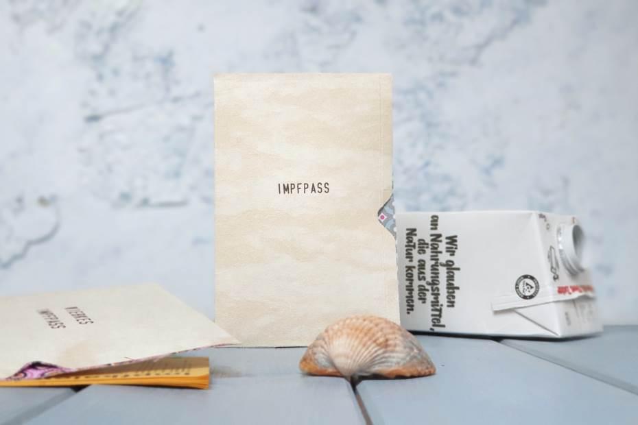Impfpass Hülle DIY upcycling